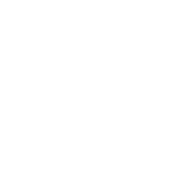 logo CSD
